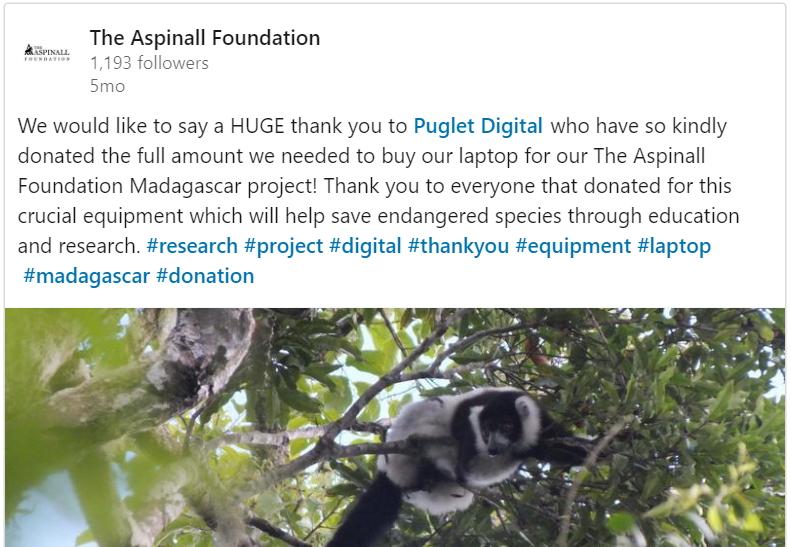 Aspinall Lemur Laptop